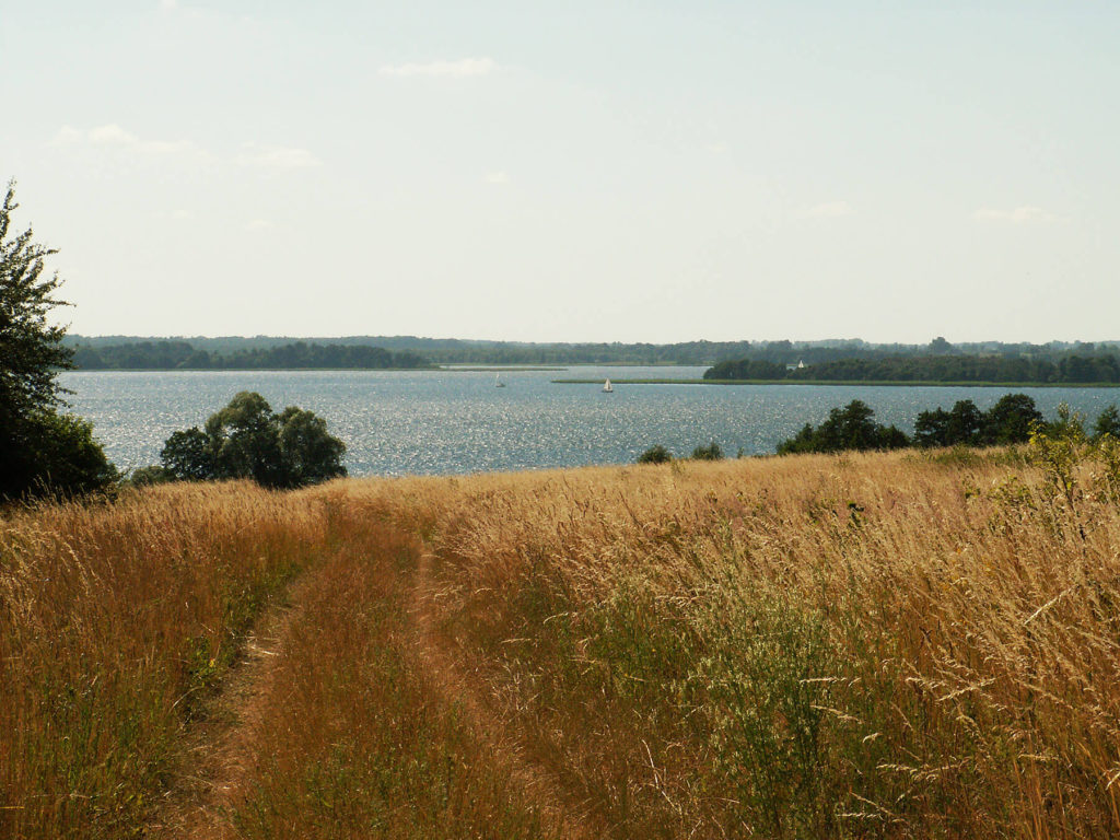 Jezioro Dobskie z Półwyspu Fuledzkiego