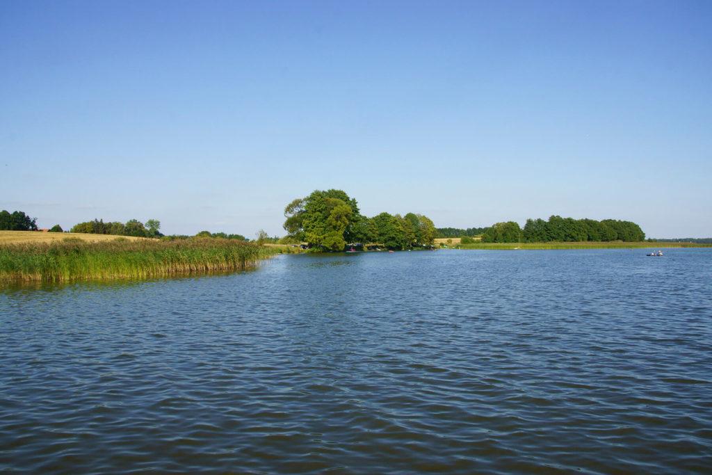 Brzeg Jeziora Dobskiego w Jerzykowie