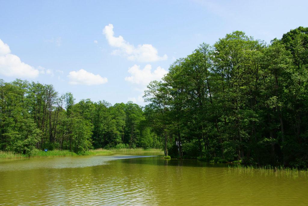 Jezioro Guzianka Mała