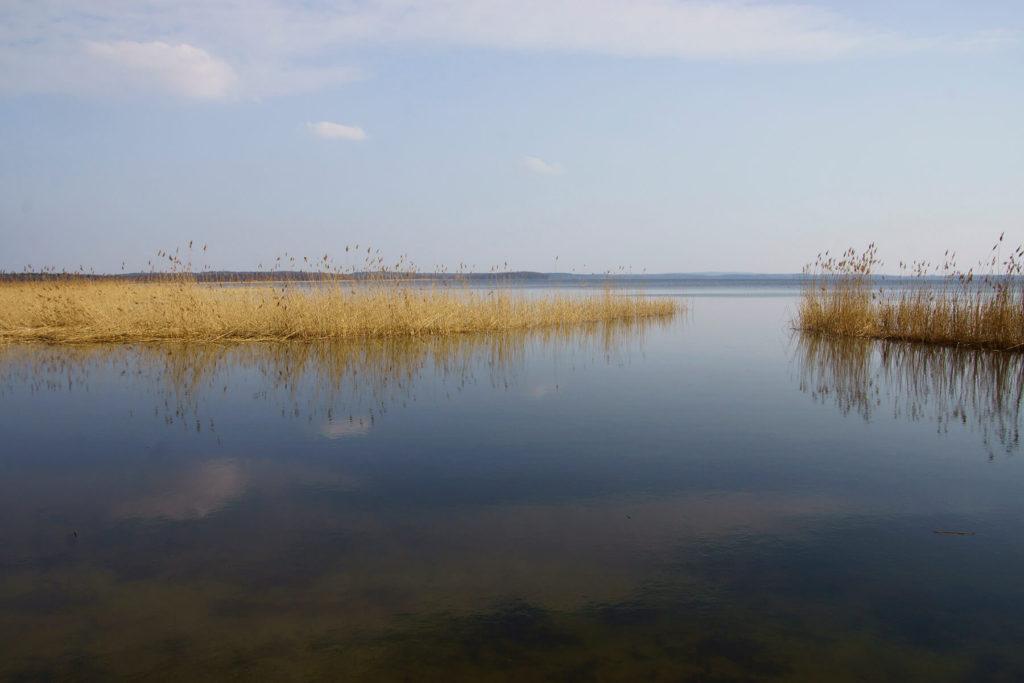Wiosenna flauta na jeziorze Dargin
