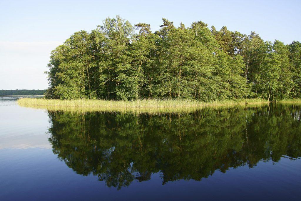 Wyspa Olchowa