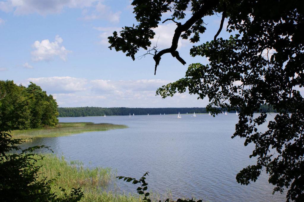 Widok na Jezioro Nidzkie ze skarpy przy leśniczówce Pranie